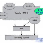 PHP内核探索:Apache模块介绍