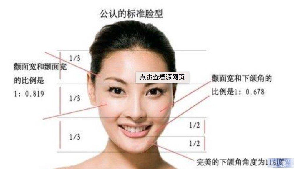 公认标准型脸
