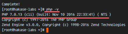 查看 PHP 版本号